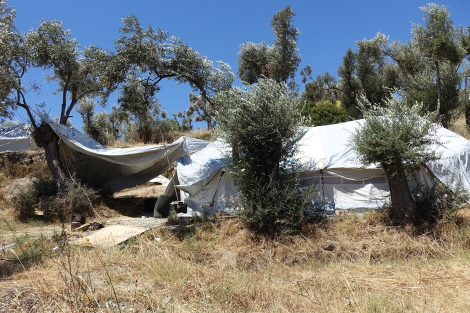 The The landscape in Lesvos combining olive trees and squatter tents (Photo: André Tribbensee)